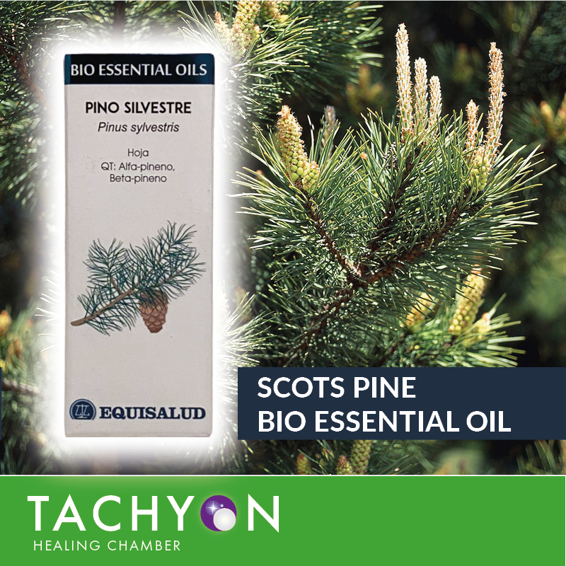 Bio Essential Oil SCOTS PINE 10ml